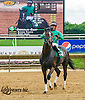 Unbridled Giant winning at Delaware Park on 6/2/16