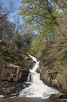 Europe/France/Normandie/Basse-Normandie/50/Manche/Mortain: la Grande Cascade située sur la Cance, //  France, Manche, Mortain, The large waterfall