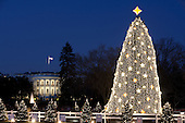 Washington, DC - December 16, 2009 -- The White House serves as a backdrop for the National Christmas Tree on the Ellipse in Washington, D.C., Wednesday, December 16, 2009..Mandatory Credit: Chuck Kennedy - White House via CNP