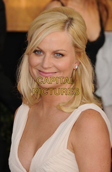 AMY POEHLER .15th Annual Screen Actors Guild Awards held at the Shrine Auditorium,  Los Angeles, California, USA, .25 January 2009..SAG red carpet arrivals portrait headshot cream off white.CAP/ADM/BP.©Byron Purvis/Admedia/Capital PIctures
