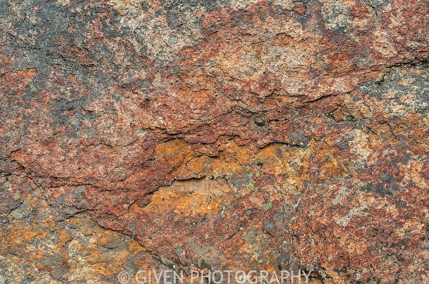 Close-up of rock and lichen, North Cascade Mountains, Washington