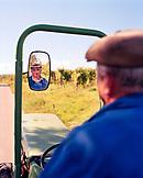 AUSTRIA, Morbisch, portrait of farmer Fischl Helmut during harvest, Burgenland