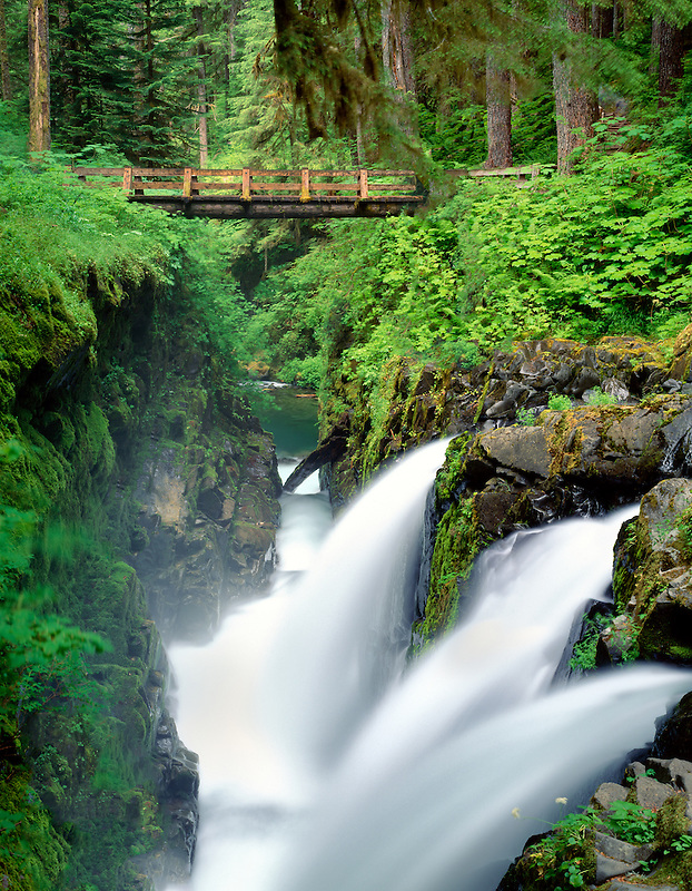 Sol Duc Falls, Olympic National Park. Washington.