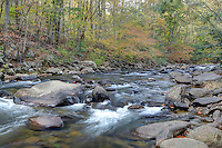 Water rushes over rocks in the fall colored The River in Nelson County, VA. Photo/Andrew Shurtleff