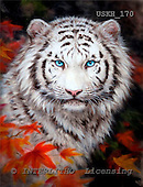 Kayomi, REALISTIC ANIMALS, paintings, tiger, WhiteTigerAutumn_M, USKH170,#A# realistische Tiere, realista, illustrations, pinturas