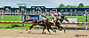 Treat to Success winning at Delaware Park on 7/3/13