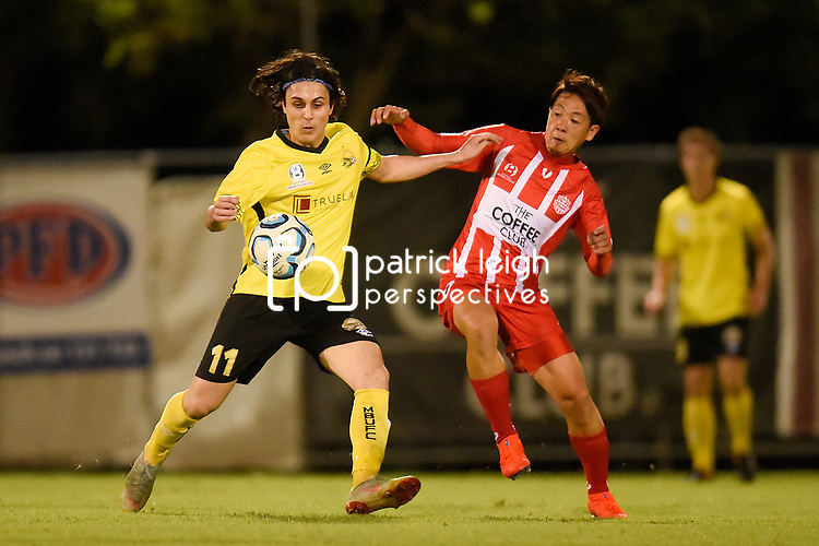 BRISBANE, AUSTRALIA - MARCH 31:  during the NPL Queensland Senior Mens Round 9 match between Olympic FC and Moreton Bay Jets at Goodwin Park on March 31, 2019 in Brisbane, Australia. (Photo by Patrick Kearney)