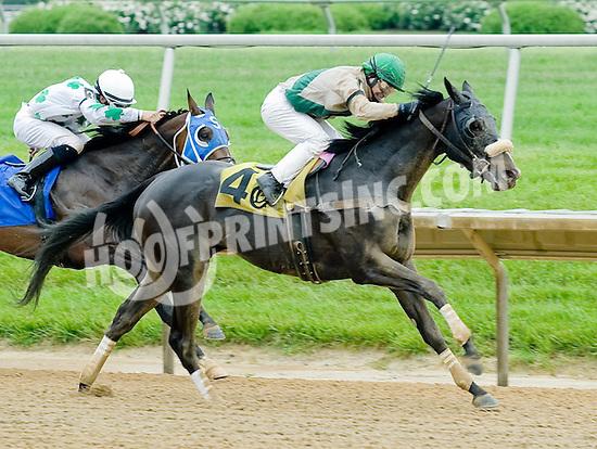 Diosa Del Sol winning at Delaware Park on 5/14/12