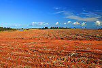 Images of The Canadian Maritime Provinces of Nova Scotia and Prince Edward Island.  Red soil in a potato field.