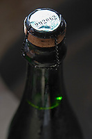 Close up of the cork and capsule on the bottle of red sparkling wine. with an official tax stamp. Bodega Pisano Winery, Progreso, Uruguay, South America