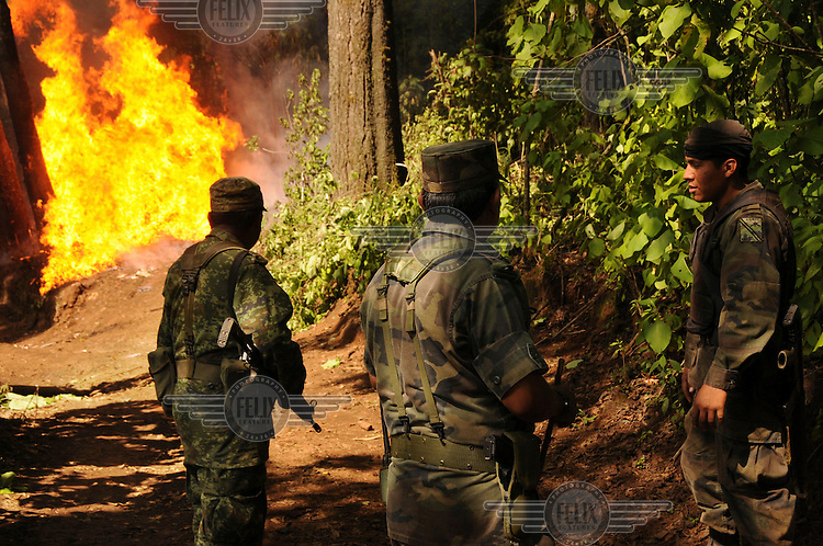 An army regiment based in Morelia burns down a drugs laboratory discovered in a remote mountainous area. In recent years, the Sinaloa cartel and 'La Familia de Michoacan' cartel have turned to the production of the highly addictive drug crystal meth, also known as methamphetamine, metamfetamine or its street name 'Ice'. The production takes place in small laboratories in remote areas which are equipped with sophisticated equipment.