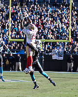 The Carolina Panthers played the San Francisco 49ers at Bank of America Stadium in Charlotte, NC in the NFC divisional playoffs on January 12, 2014.  The 49ers won 23-10.  San Francisco 49ers wide receiver Michael Crabtree (15), Carolina Panthers running back Jonathan Stewart (28)