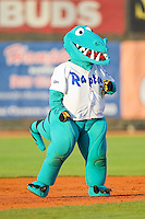 """Ogden Raptors mascot """"Ozzie"""" between innings of the Pioneer League game against the Orem Owlz at Lindquist Field on July 28, 2012 in Ogden, Utah.  The Raptors defeated the Owlz 8-7.   (Brian Westerholt/Four Seam Images)"""