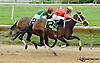 Cherokee Kitten winning at Delaware Park racetrack on 6/26/14