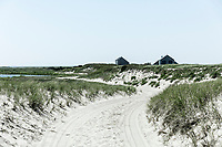 Remote coastal beach cottages, Nantucket, Massachusetts, USA.