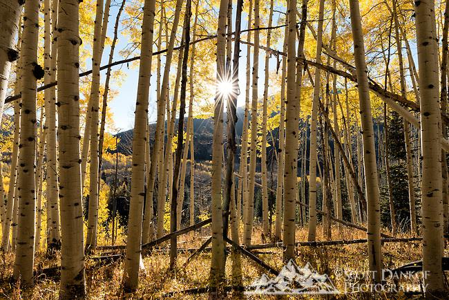 The sun peaks over a ridge near Ohio Pass, Colorado