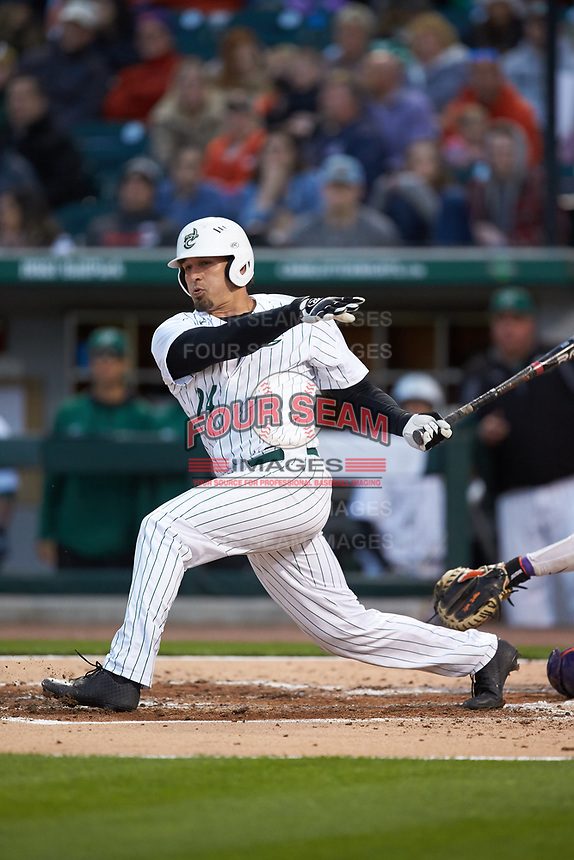 Dominick Cammarata (24) of the Charlotte 49ers follows through on his swing against the Clemson Tigers at BB&T BallPark on March 26, 2019 in Charlotte, North Carolina. The Tigers defeated the 49ers 8-5. (Brian Westerholt/Four Seam Images)
