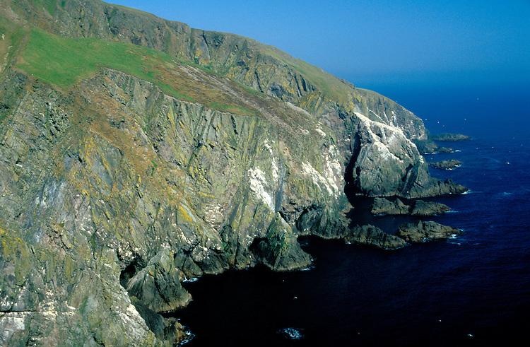 Seabird Cliffs, Fair Isle