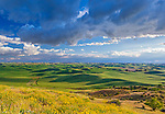 The Palouse, Whitman County, Washington: Dramatic clouds over the rolling wheat fileds of the Palouse from Steptoe Butte State Park.