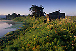 Sunrise light on the Arcata Marsh, Arcata, Humboldt County, CALIFORNIA