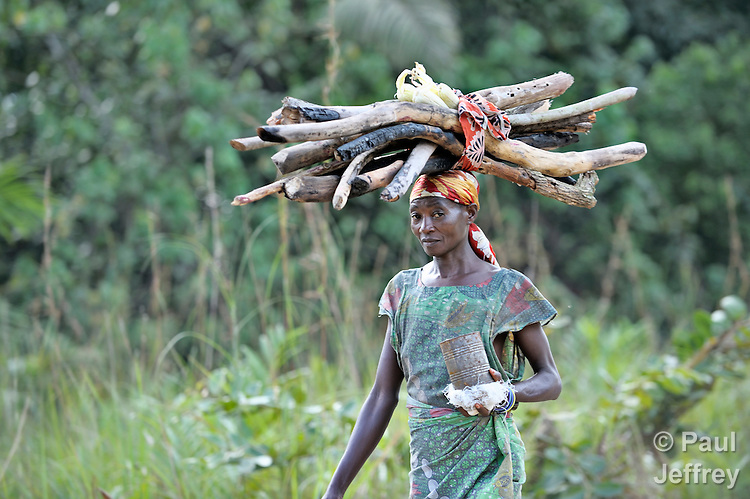 A woman carries firewood home in the Congolese village of Minga.