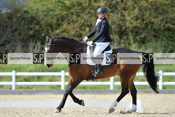 Class 6. Novice 28. Unaffiliated dressage. Brook Farm Training Centre. Essex. 15/04/2017. MANDATORY Credit Garry Bowden/Sportinpictures - NO UNAUTHORISED USE - 07837 394578