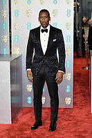 LONDON, UK - FEBRUARY 10: Mahershala Ali at the 72nd British Academy Film Awards held at Albert Hall on February 10, 2019 in London, United Kingdom. Photo: imageSPACE/MediaPunch<br /> CAP/MPI/IS<br /> ©IS/MPI/Capital Pictures