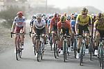 The peloton including race leader Red Jersey Primoz Roglic (SLO) Team Jumbo-Visma and World Champion Alejandro Valverde (ESP) Movistar Team during Stage 4 of the 2019 UAE Tour, running 197km form The Pointe Palm Jumeirah to Hatta Dam, Dubai, United Arab Emirates. 26th February 2019.<br /> Picture: LaPresse/Fabio Ferrari | Cyclefile<br /> <br /> <br /> All photos usage must carry mandatory copyright credit (© Cyclefile | LaPresse/Fabio Ferrari)