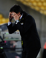 Phoenix coach Darije Kalezic reacts to a decision during the A-League football match between Wellington Phoenix and Brisbane Roar at Westpac Stadium in Wellington, New Zealand on Saturday, 28 October 2017. Photo: Dave Lintott / lintottphoto.co.nz