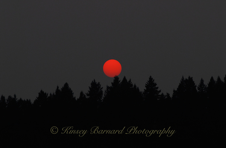 &quot;RED DOT SUNSET&quot;<br />