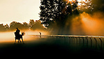 Saratoga Race Course, Saratoga Racetrack, beautiful horse racing, Thoroughbred racing, horse, equine, racehorse, morning mood