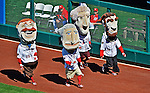 24 September 2012: The Washington Nationals Mascots: the Racing Presidents, entertain the fans between innings during a game against the Milwaukee Brewers at Nationals Park in Washington, DC. The Nationals defeated the Brewers 12-2 in the final game of their 4-game series, splitting the series at two. Mandatory Credit: Ed Wolfstein Photo