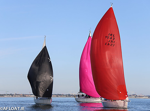 Gently does it! Even a loudly spoken sentence seems to threaten the collapse of spinnakers in the light north wind. J109 Indian (Red) leads Samaton (Pink) and White Mischief (Black)
