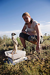 Meerkat, Suricatta suricata, being encouraged into weighing by Victoria Ashford, Kalahari Meerkat Project, Northern Cape, South Africa