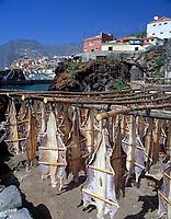 Portugal, Madeira, Fischerdorf Camara de Lobos: Katzenhai haengt zum Trocknen in der Sonne | Portugal, Madeira, fishing village Camara de Lobos: dogfish drying