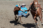 Chute dogging/Steer wrestling