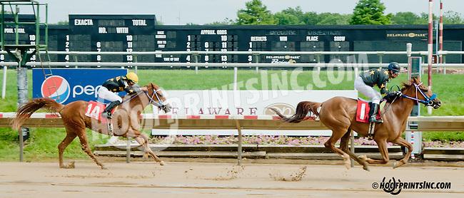 Sugar Sand winning at Delaware Park on 6/13/13