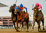 OZONE PARK, NEW YORK - FEBRUARY 02: Tax #1 (pink cap), ridden by Junior Alvarado, wins the Withers Stakes on Withers Stakes Day at Aqueduct Race Track in Ozone Park, New York on February 2, 2019. Scott Serio/Eclipse Sportswire/CSM