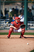 Roberto Moya (9) of Monsignor Edward Pace High School in Hialeah, Florida during the Baseball Factory All-America Pre-Season Tournament, powered by Under Armour, on January 13, 2018 at Sloan Park Complex in Mesa, Arizona.  (Mike Janes/Four Seam Images)