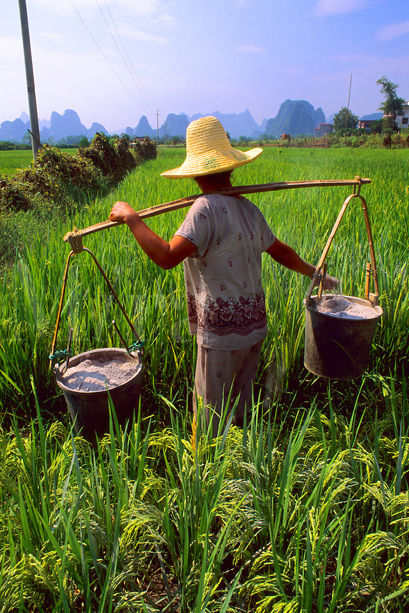 Local farmer carrying fertilizer on back in mountain area of Li River in unique Guilin Yangshuo area of China