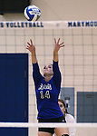 Marymount's Erin Allison sets in a college volleyball match against PSU Harrisburg at Marymount University in Arlington, Vir., on Wednesday, Oct. 9, 2013.<br /> Photo by Cathleen Allison