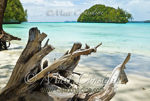 Driftwood on tropical beach in Palau, with a typical rock island, Palau Micronesia. (Photo by Matt Considine - Images of Asia Collection) (Matt Considine)