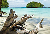 Driftwood on tropical beach in Palau, with a typical rock island, Palau Micronesia. (Photo by Matt Considine - Images of Asia Collection)