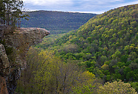 Upper Buffalo Wilderness Area, Arkansas:<br /> Hawksbill Crag, an outcrop on Whitaker Point above the Ozark spring forest