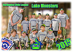 2015 Burlington North End Gray Lake Monsters