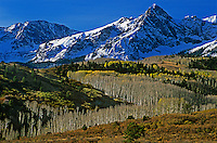 738500003 aspens in fading fall color wind their way through a sweeping s-curve towards the san juan mountains in the dallas divide rocky mountains area of colorado