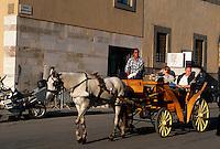 Italien, Toskana, Pisa, Pferdewagen