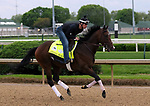 April 26, 2019 : Omaha Beach works out  at Churchill Downs, Louisville, Kentucky, preparing for a start in the Kentucky Derby. Owner Fox Hill Farms Inc., trainer Richard E. Mandella. By War Front x Charming (Seeking the Gold) Mary M. Meek/ESW/CSM