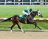 Molly Moon winning at Delaware Park on 9/30/09
