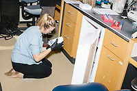 Research Assistant Helene Kuchwara sets up PCRs (polymerase chain reactions) for editing bacterial genomes in George Church's Lab in the New Research Building at Harvard Medical School's Department of Genetics in Boston, Massachusetts, USA, on Tues., Sept. 5, 2017.